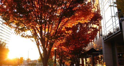 Fall sunset in Tech Square